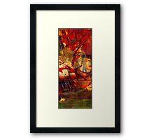 In Wisdom Valley Framed Print