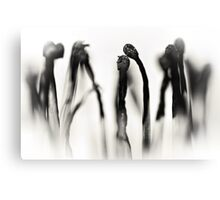And she did 'Light my fire' but it wasn't everlasting.... (The Sequel... bw) Canvas Print