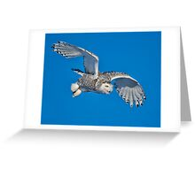 Silent White Greeting Card