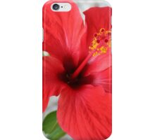 A Stunning Scarlet Hibiscus Tropical Flower iPhone Case/Skin