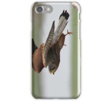 Kestral in flight iPhone Case/Skin
