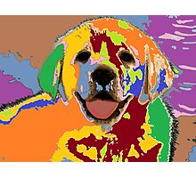 puppy Portrait 7 Photographic Print