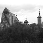 Gherkin Vs The Tower of London by PhotogeniquE IPA