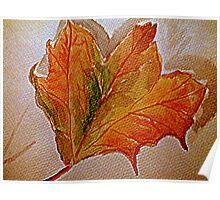 Autumnal leaf. Poster