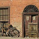 In the Streets of Aswan by KerryPurnell