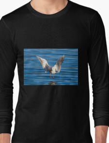 Black-headed gull (Chroicocephalus ridibundus)  Long Sleeve T-Shirt
