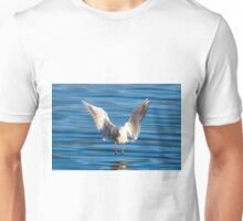 Black-headed gull (Chroicocephalus ridibundus)  Unisex T-Shirt