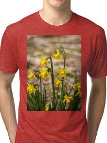 Clump of golden daffodils Tri-blend T-Shirt