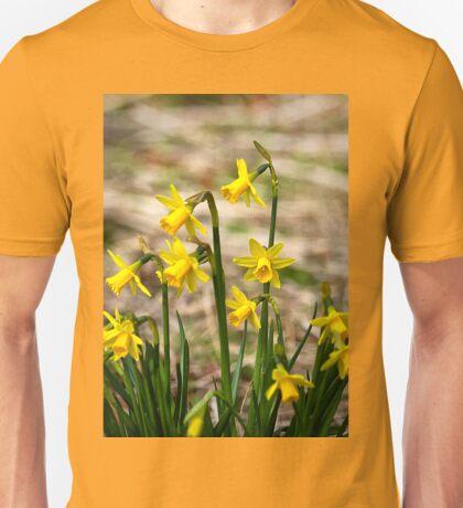 Clump of golden daffodils Unisex T-Shirt