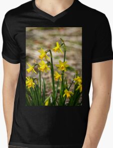 Clump of golden daffodils Mens V-Neck T-Shirt