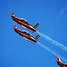 Stunt Planes by Luke Donegan