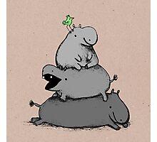 Hippo Totem Photographic Print