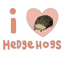 I ❤ Hedgehogs by Sophie Corrigan