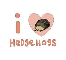 I ❤ Hedgehogs Photographic Print