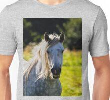 Dapple Grey in morning light Unisex T-Shirt