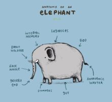 Anatomy of an Elephant Kids Clothes