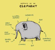 Anatomy of an Elephant Baby Tee