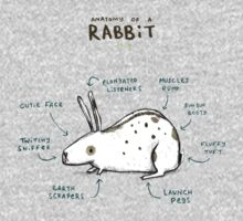 Anatomy of a Rabbit One Piece - Short Sleeve