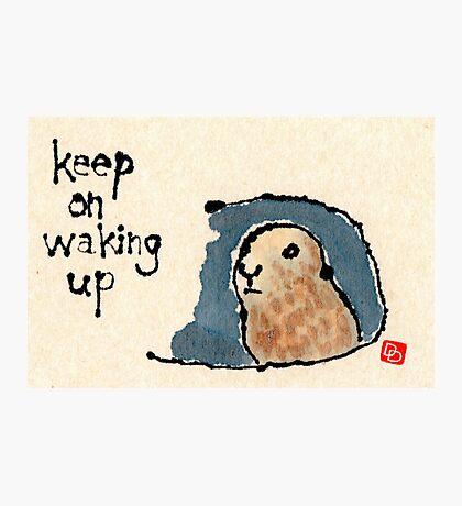 Groundhog Wisdom Photographic Print