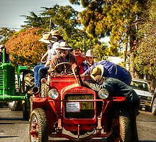 I know it's in there somewhere! ~ Gulgong NSW by Rosalie Dale