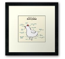 Anatomy of a Chicken Framed Print