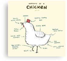 Anatomy of a Chicken Canvas Print