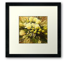 Flowers in a Cup Framed Print