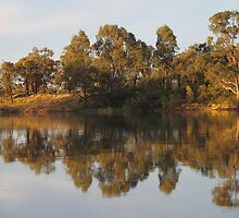 River Murray Reflections #2 by Carole-Anne