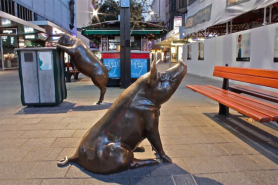 Rundle Mall Pigs at night. by Ferenghi