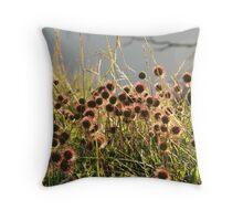 Wildflowers on Mt. Buffalo Throw Pillow