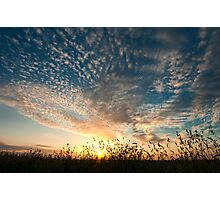 A beautiful day Photographic Print