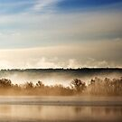 Mist on the Lake by Mark Stone