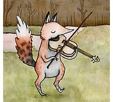 Violin Fox Photographic Print