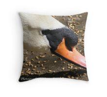Mute Swan Eating Throw Pillow