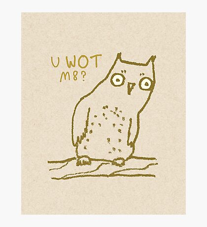 Confused Owl Photographic Print