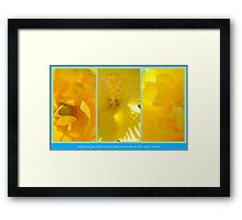 Blue Skies & Sunshine... Framed Print