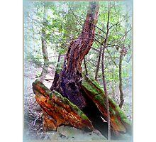 Between Two Rocks Photographic Print