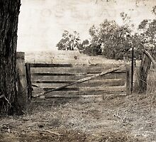 The gate by pennyswork