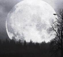 When Night Is Falling Sticker