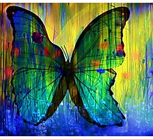 Happiness Is Like A Butterfly Photographic Print
