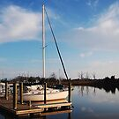 Dockside In Historic Georgetown by Kathy Baccari