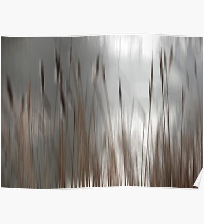 Reeds Abstract - brown Poster