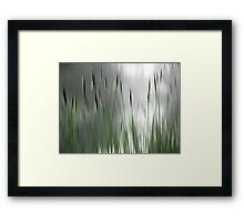Reeds Abstract - green Framed Print