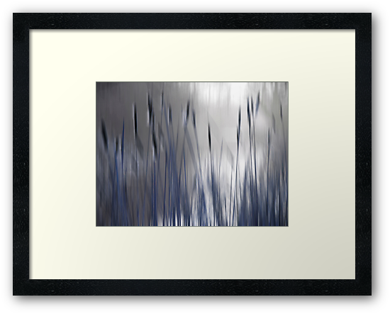 Reeds Abstract - blue by KUJO-Photo