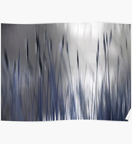 Reeds Abstract - blue Poster