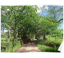 The Lane to Lan Farm Poster