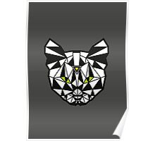 Crystal Cat Poster