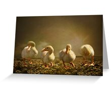 Dancing On Daisies Greeting Card