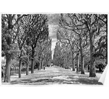 Jardin Des Plantes Gardens, Paris Poster
