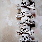 Bones and Bones by Matthew Pugh